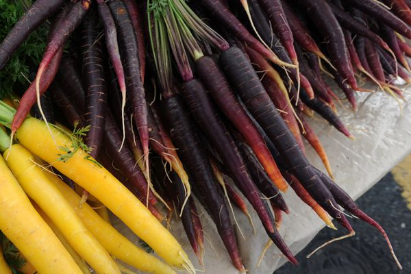 Yellow and purple carrots are sold alongside the traditional orange at the Stockwell Farm stand at the South Anchorage Farmers Market on Wednesday, September 4, 2013, in front of the Dimond Hotel. (Erik Hill / ADN)