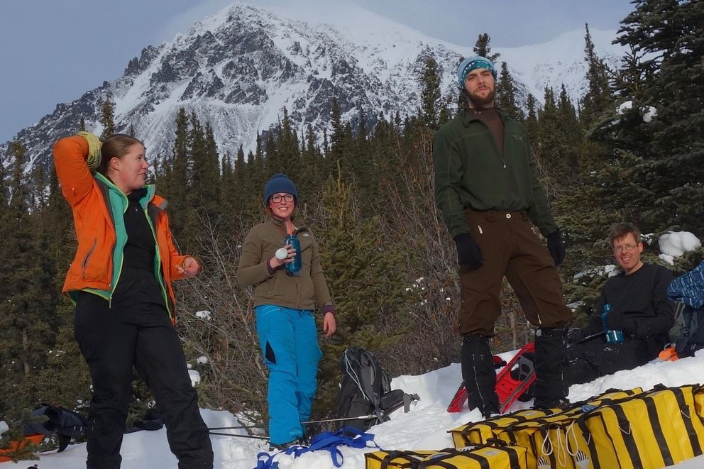 With Panorama Mountain in the background, from left, Lynn Kaluzienski, Elizabeth Berg, Cole Richards and Carl Tape take a break from stomping out a 1-kilometer snowshoe line across the Denali Fault near Cantwell.