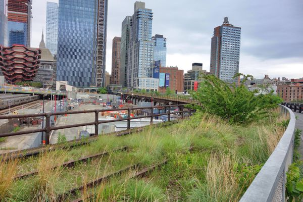 Walking the High Line over the Hudson Yards at the north end of the park. (Photo : Scott McMurren)