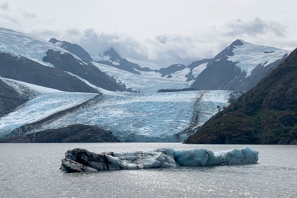One of two large new icebergs floats in Portage Lake Wednesday, Aug. 14, 2019. The icebergs recently calved from Portage Glacier. 'It's what we call a shooter, ' said Sage Harmon, a ranger interpreter narrating a Portage Glacier cruise Wednesday afternoon. Shooters are chunks of ice that calve from glaciers below the waterline. (Jeff Parrott / ADN)