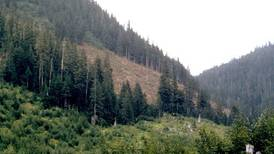 Why the Tongass National Forest should be totally exempt from the Roadless Rule