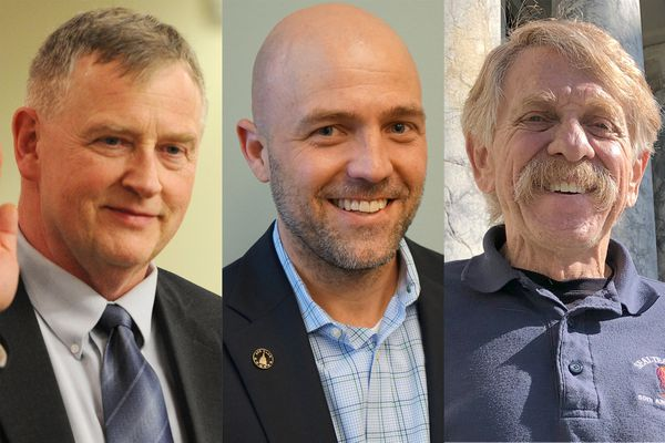 The Alaska Republican Party has nominated former state Sen. Dave Donley, former statehouse candidate Al Fogle and current Rep. Laddie Shaw to fill the seat in the Alaska Senate left vacant by the death of Sen. Chris Birch.