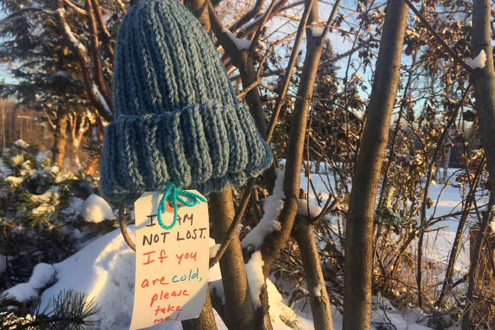 Knit hats were hung in trees at Valley of the Moon Park in November, 2017 by Knitters of the North. They were left for people to take. (Devin Kelly / ADN)
