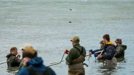 Cook Inlet commercial interests launch all-out attack on personal use and sport fishing