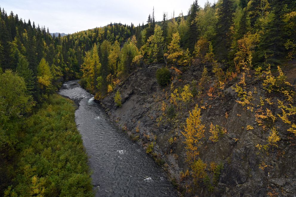The banks of Canyon Creek show the autumn colors Sept. 15, 2020. A pedestrian can walk across the old bridge that spans the creek by taking the path from the rest area on the east side of the creek. (Anne Raup / ADN)
