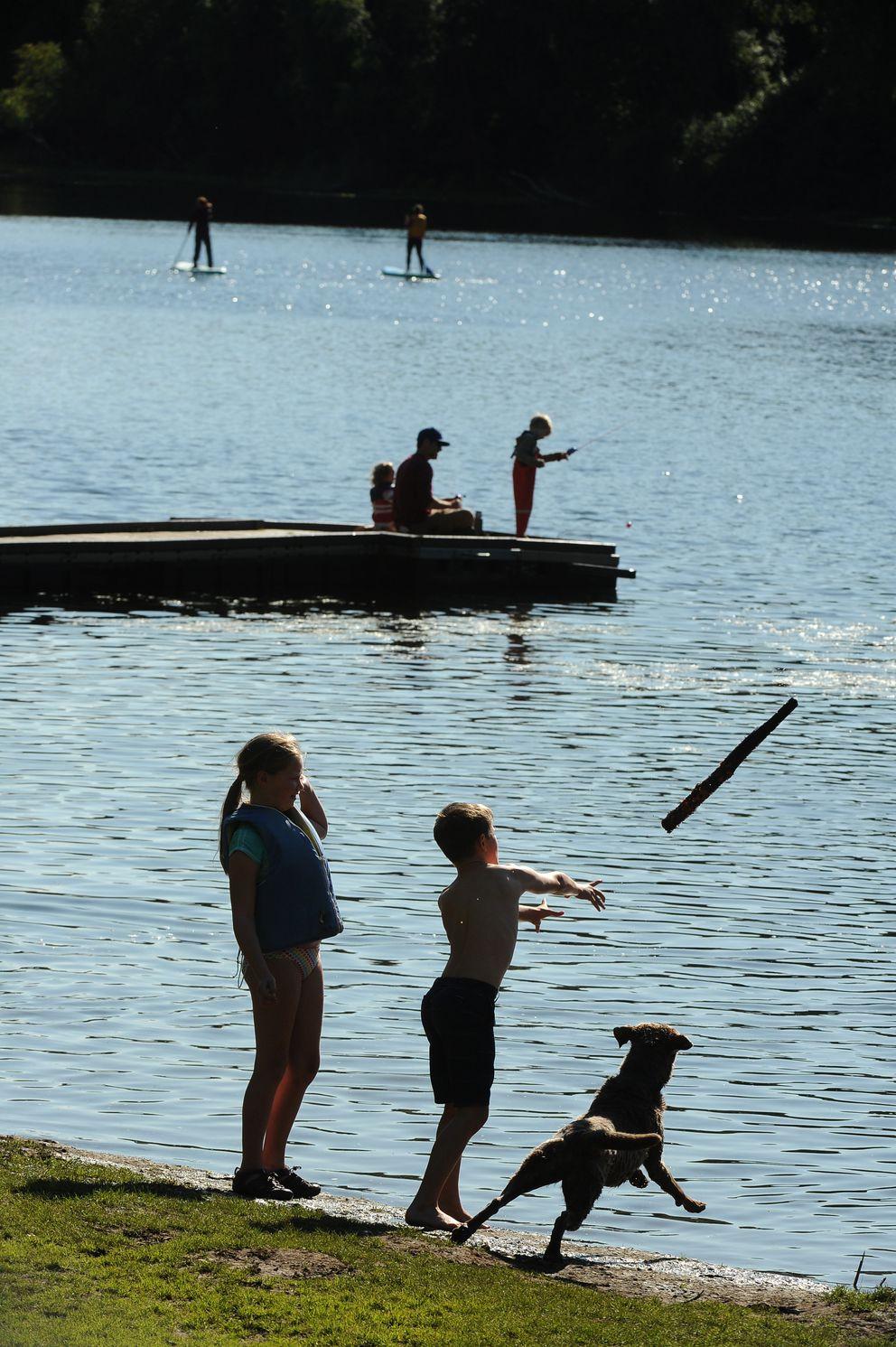 Avery Steadman looks on as her brother, Soren Steadman, throws a stick for Jorgie at Little Campbell Lake. (Bob Hallinen / ADN)