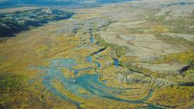 Dunleavy administration maintains silence on plan to change Alaska's water rights system