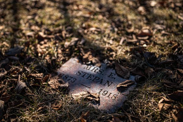 A gravesite for Mrs. E. Stepan, an Anchorage resident who died from the 1918 Spanish Flu. Photographed at the Anchorage Memorial Park Cemetery on Saturday, April 25, 2020. (Loren Holmes / ADN)