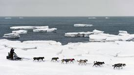 Iditarod joins new international race circuit in an effort to increase exposure, showcase dog care