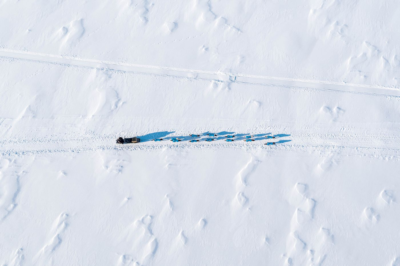 Tom Knolmayer mushes across Submarine Lake in the Farewell Burn on Tuesday during the Iditarod. (Loren Holmes / ADN)