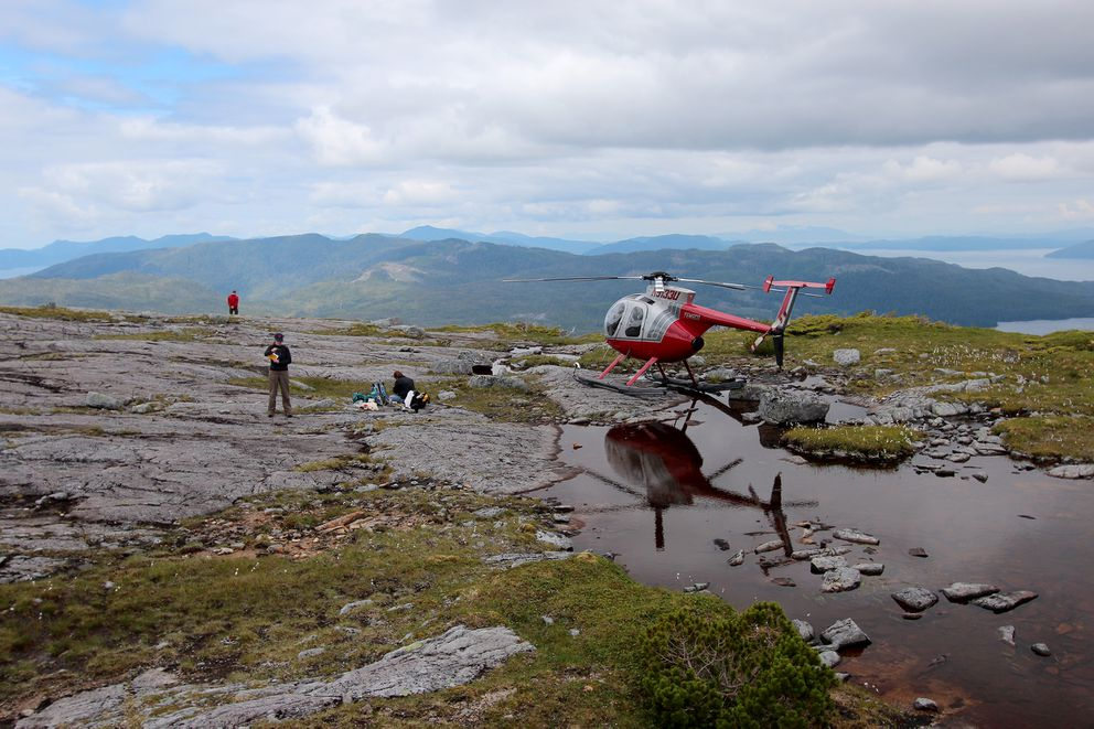 Researchers visit a remote island in the Alexander Archipelago ofSoutheast Alaska. (Jason Briner via The New York Times)