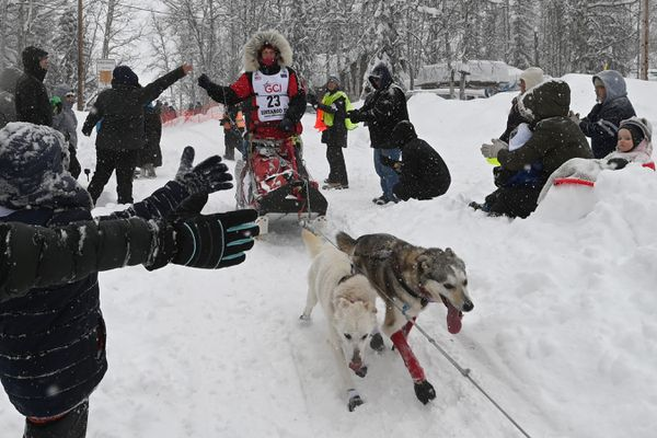 Aliy Zirkle is greeted by fans after exiting Willow Lake during the restart of the Iditarod Trail Sled Dog Race in Willow on Sunday, March 8, 2020. (Bill Roth / ADN)
