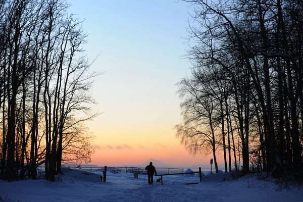Rich Ursin checks out the sunset while walking his dogs on Tuesday afternoon, Jan. 17, 2017, at Jodhpur in Kincaid Park. (Erik Hill / Alaska Dispatch News)