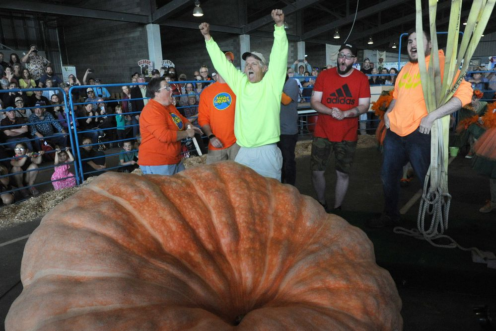 Dale Marshall of Anchorage reacts to breaking the state record with his 2051-pound pumpkin during the weigh-off at the Alaska State Fair in Palmer on Tuesday, Aug. 27, 2019. (Bill Roth / ADN)