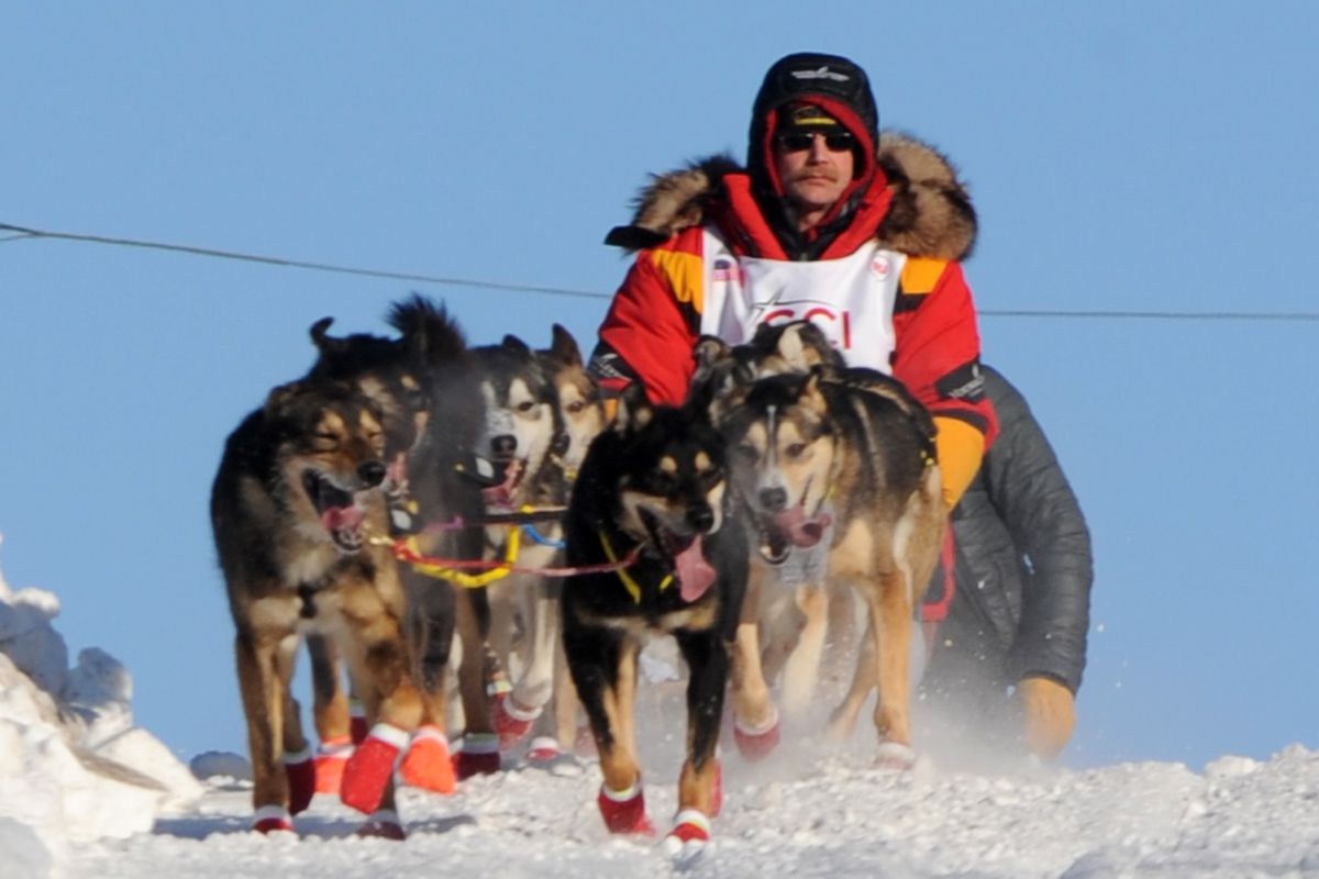 Mitch Seavey crosses 15th Avenue during the Iditarod's ceremonial start on Saturday. (Erik Hill / Alaska Dispatch News)