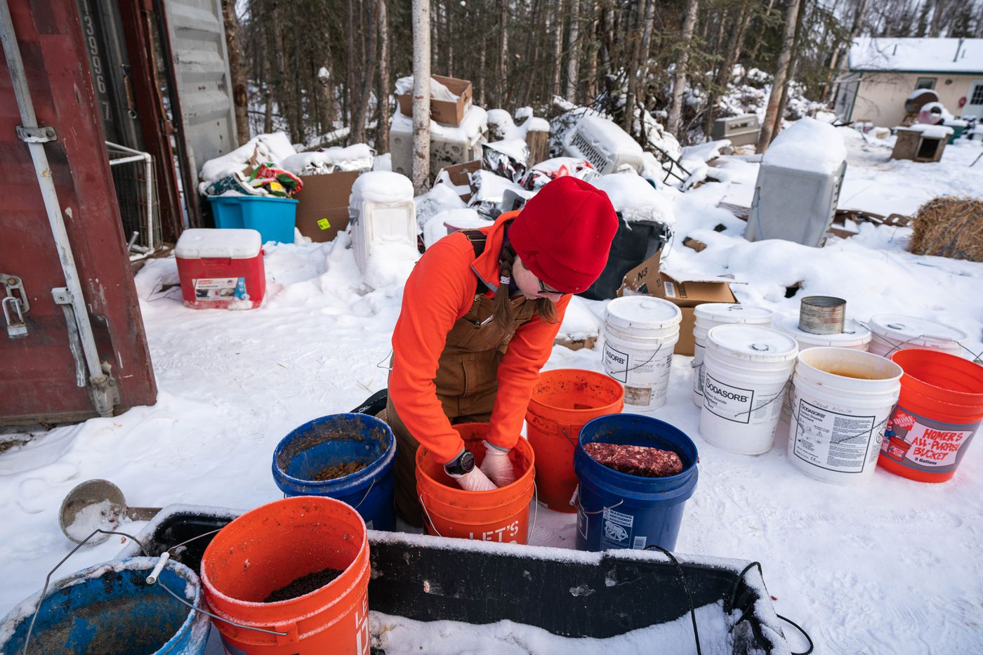 Merideth Mapes breaks up meat to feed her 50 dogs. Ten of the dogs are rescues and will be re-homed soon. (Loren Holmes / ADN)
