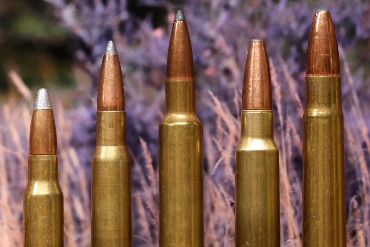 Best all-around caliber for Alaska big-game hunting? Can