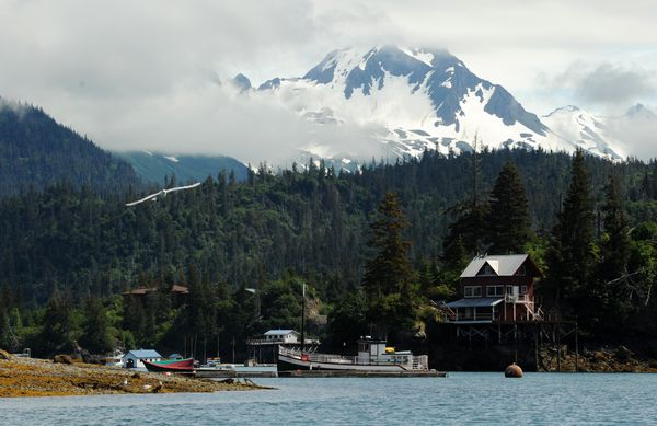 Halibut Cove begins to reveal itself in a view from the entrance at the west end of the cove in Kachemak Bay. (Erik Hill / ADN)