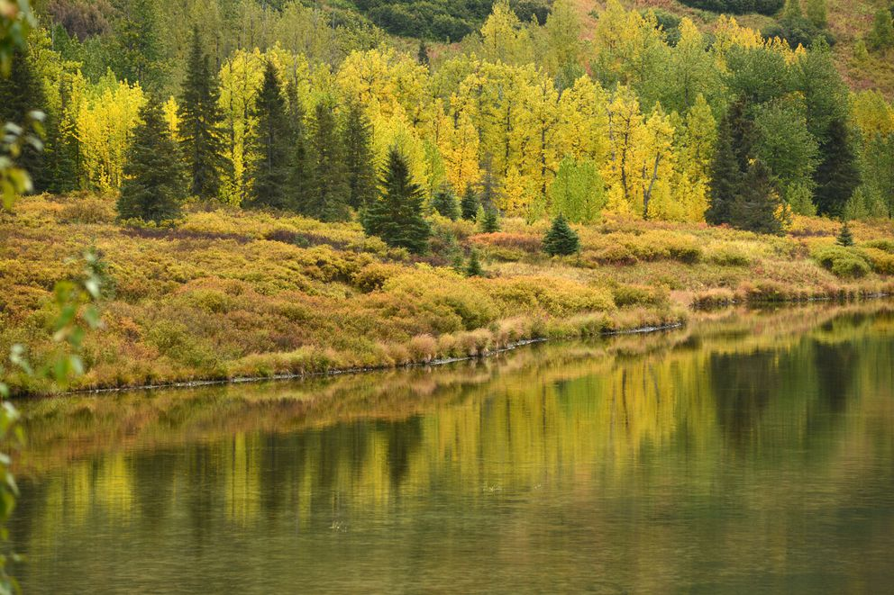 Colors along the shores of Lower Summit Lake on the Seward Highway reflect in the water Sept. 15, 2020. (Anne Raup / ADN)