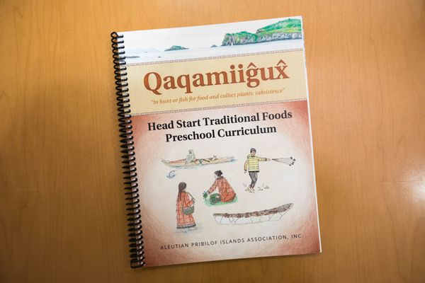 The Head Start Traditional Foods Preschool Curriculum, prepared by the Aleutian Pribilof Islands Association, is being used starting this month in communities in the Unangax region from Sand Point to St. Paul. It highlights local subsistence foods, teaches students the words for foods in the Unangam Tunuu language, and encourages traditional cultural practices. Photographed at the Aleutian Pribilof Islands Association on Sept. 7, 2017. (Loren Holmes / Alaska Dispatch News)