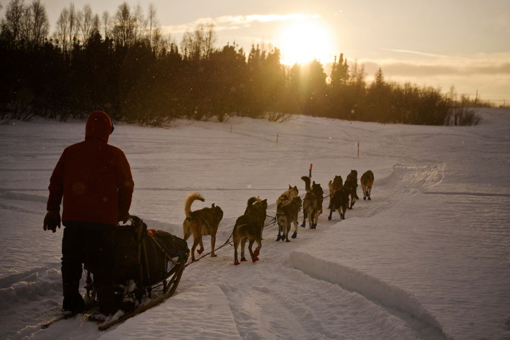Ramey Smyth approaches Shageluk as rain falls and some sun hits the area during the Iditarod on March 8, 2019. (Marc Lester / ADN)