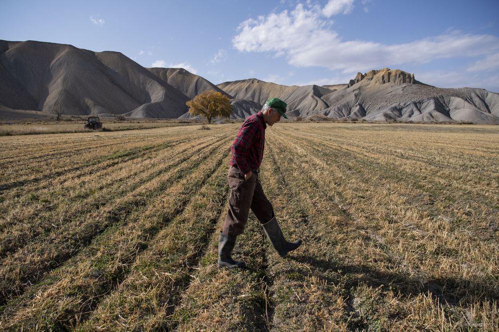 Paul Kehmeier walks through a field on his farm in Eckert, Colo. (Washington Post photo by Carolyn Van Houten)