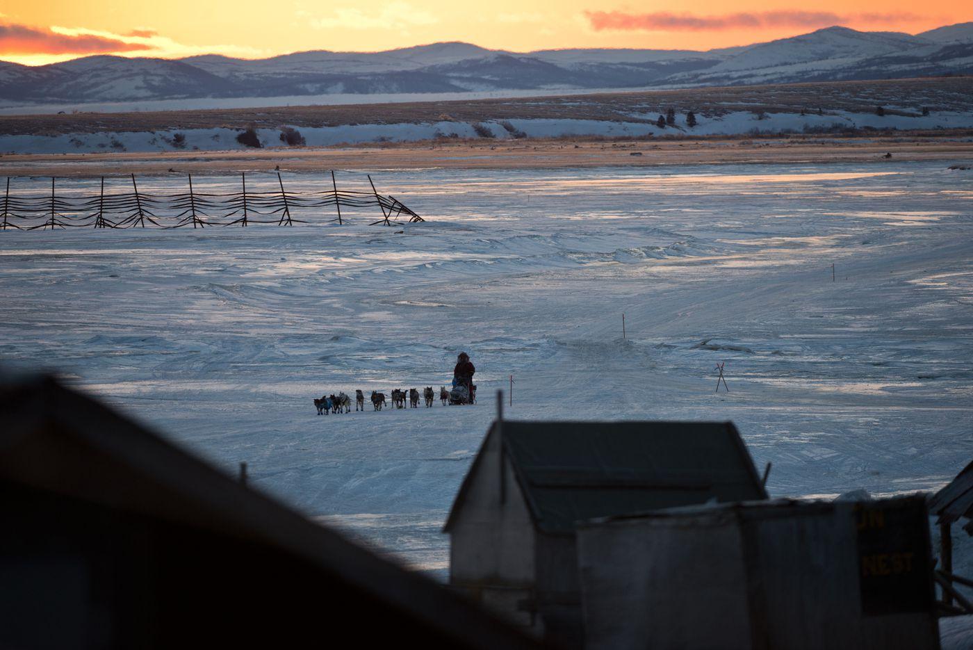 Iditarod musher Noah Burmeister arrives in Unalakleet at sunrise on Sunday, March 13, 2016.