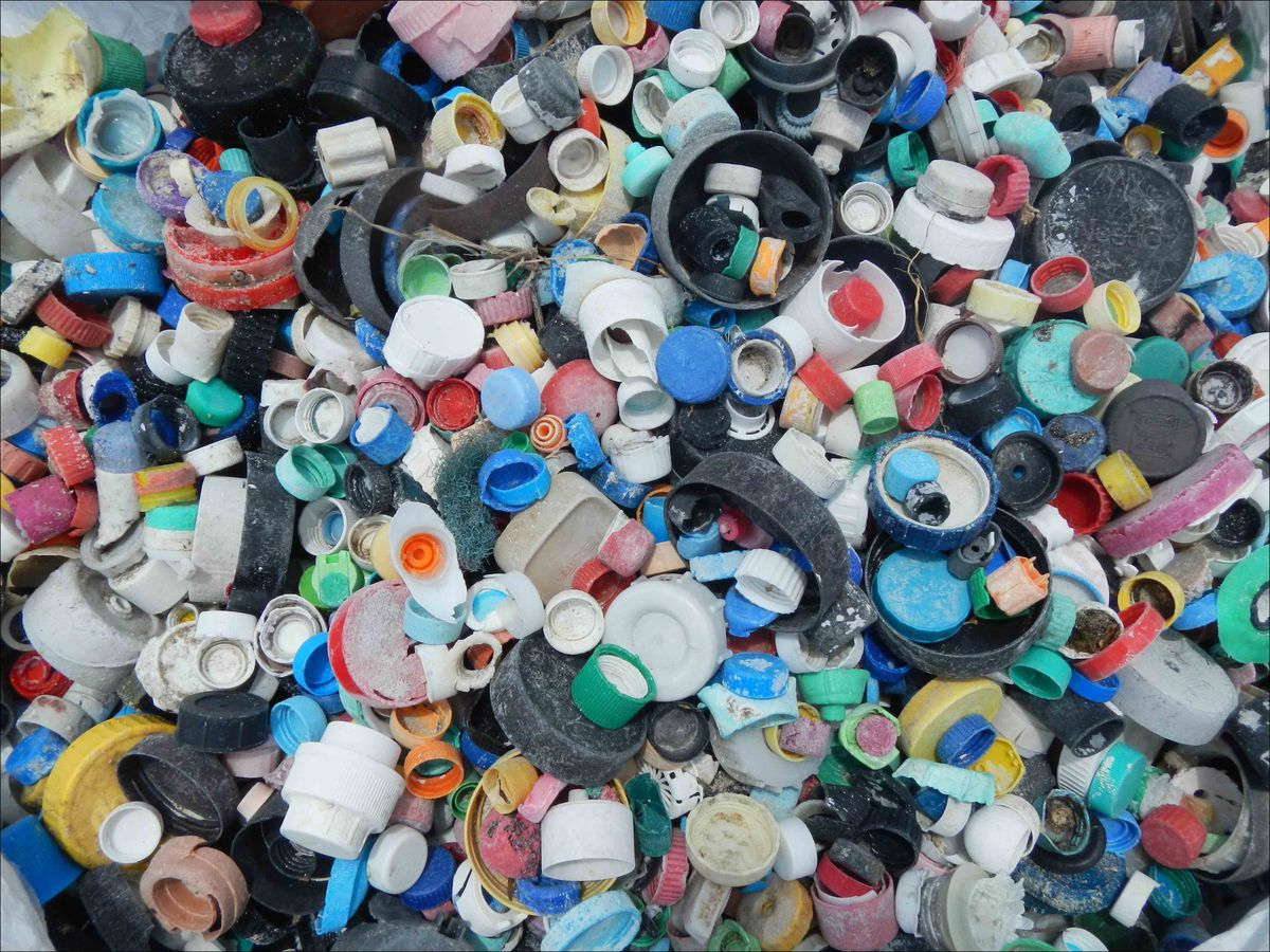 This 2013 photo, taken at Midway Island in the Pacific Ocean, shows some of the 4781 bottle caps collected from shorelines by a 9-member team from the PIFSC Coral Reef Ecosystem Division. NOAA photo by Kristen Kelly