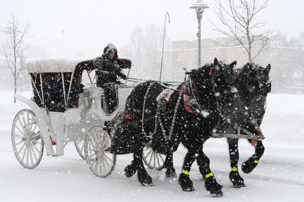 During Fur Rondy people take a tour of downtown Anchorage by The Horse Drawn Carriage Company during a snowstorm on Sunday, March 1, 2020. (Bill Roth / ADN)