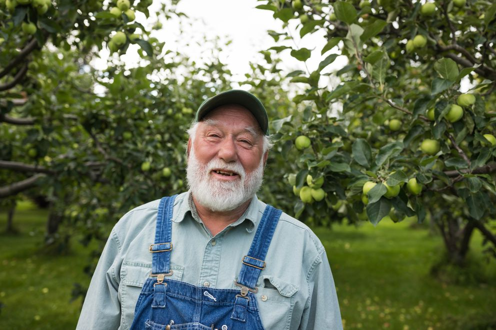 Randy Arduser stands among apple trees in his orchard on Rabbit Creek Road. (Loren Holmes / ADN)