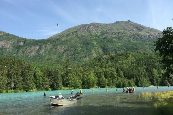 Drift boats sit on a gravel bar in the Kenai River. This year's Kenai River king salmon season is off to a slow but promising start.