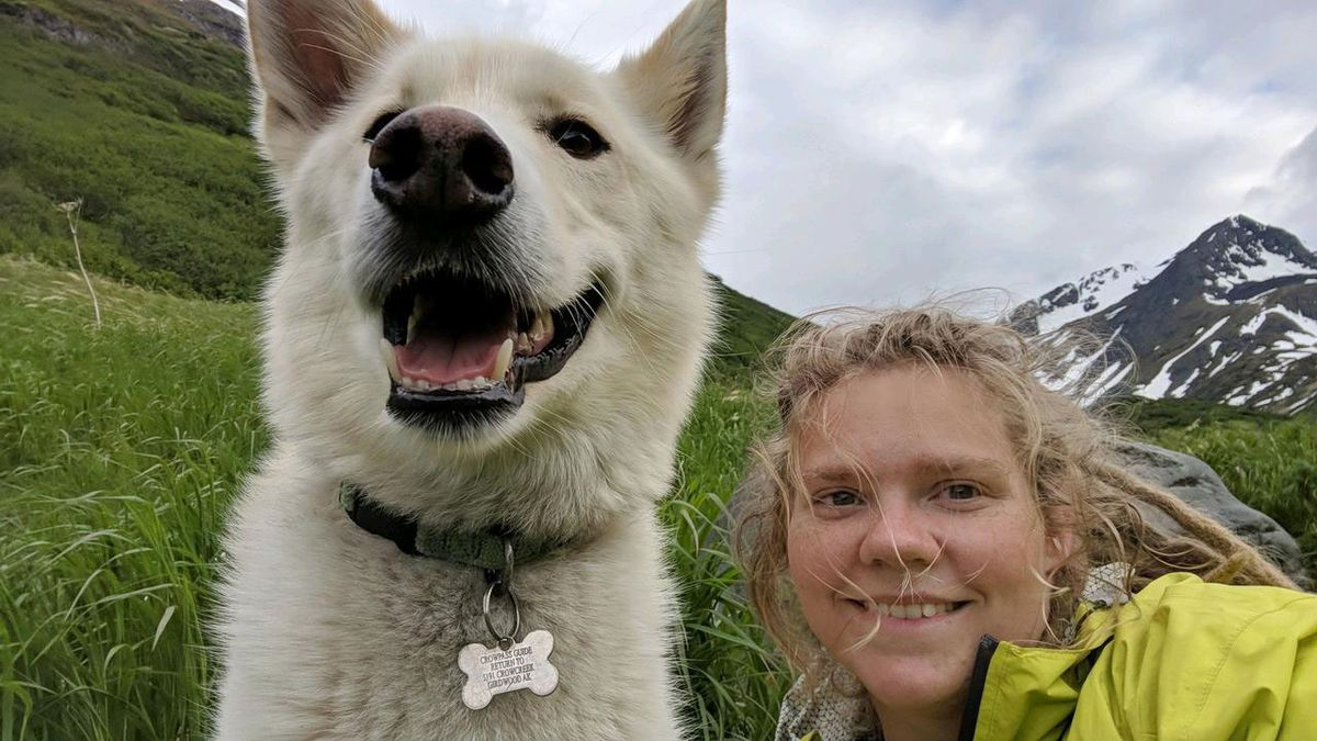 Nanook, a 7-year-old Alaskan husky, helped Amelia Milling when she fell during a hike through Crow Pass and then again crossing Eagle River on Wednesday.  (Photo by Amelia Milling)