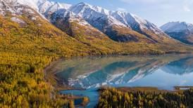 With no dam to stop it, the Eklutna River is temporarily reborn. Many people hope to keep it alive for good.