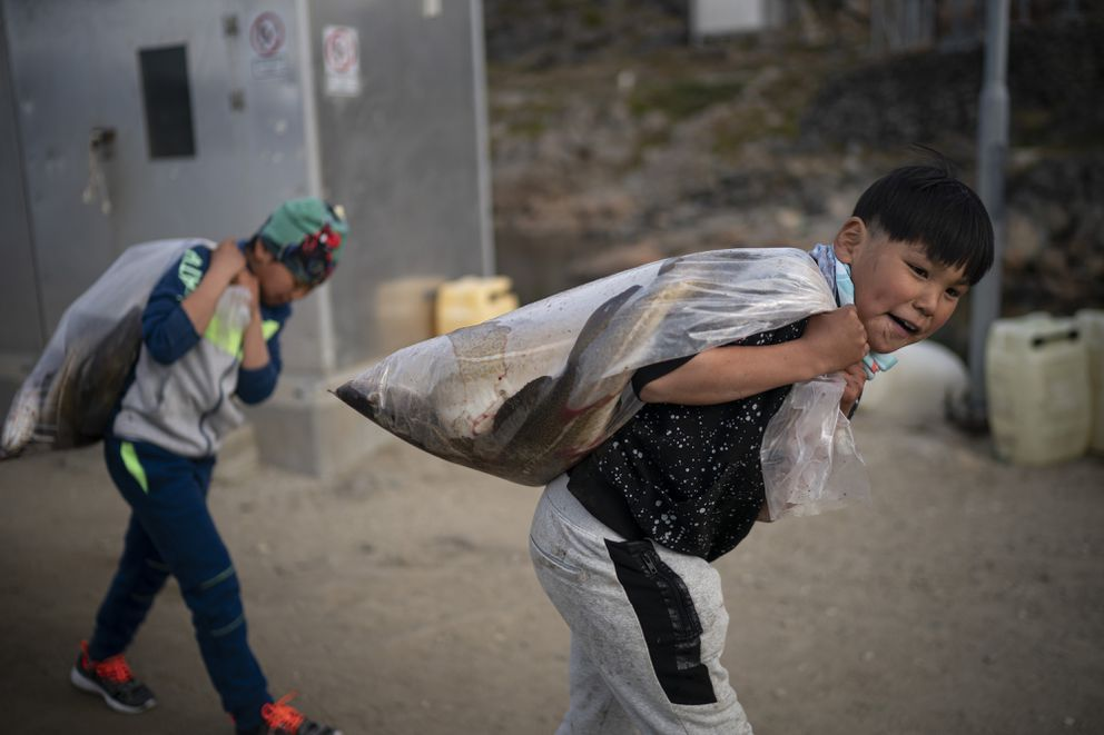In this Aug. 15, 2019, photo, boys carry plastic bags full of fish in Kulusuk, Greenland. According to local resident Mugu Utuaq, the winter that used to last as long as 10 months when he was a boy can now be as short as five months. Scientists are hard at work in Greenland, trying to understand the alarmingly rapid melting of the ice. (AP Photo/Felipe Dana)