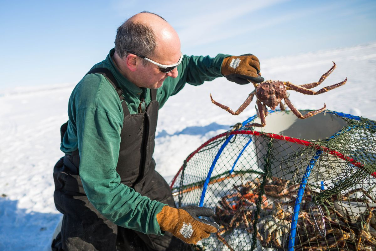 the economics behind alaskan king crab Meanwhile, the stories behind the native american names  ecology and economics do not need to collide  as in the alaskan king crab fishery and elsewhere.