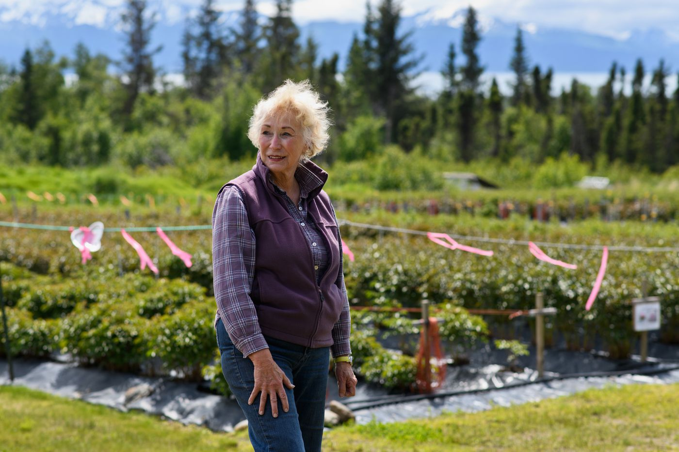 Rita Jo Shoultz started her family's business, Alaska Perfect Peony, in Homer in 2006. Photographed on June 19, 2018. (Marc Lester / ADN)