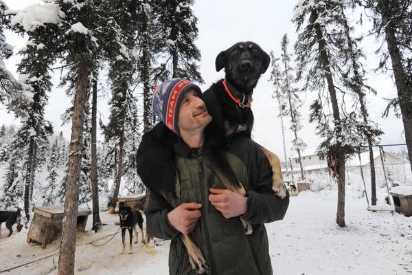 Iditarod veteran musher Nic Petit with sled dog Pam in Willow on Monday, Jan. 22, 2018. (Bill Roth / ADN)