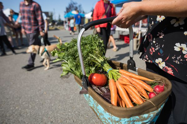 Stefanie Stewart holds a basket of produce she purchased from vendors at the South Anchorage Farmers Market on Aug. 17, 2019. She is holding carrots, tomatoes, radishes, lettuce, celery and cauliflower. (Loren Holmes / ADN)