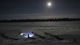 Jake Berkowitz: Who to watch this year at the top of the Iditarod pack