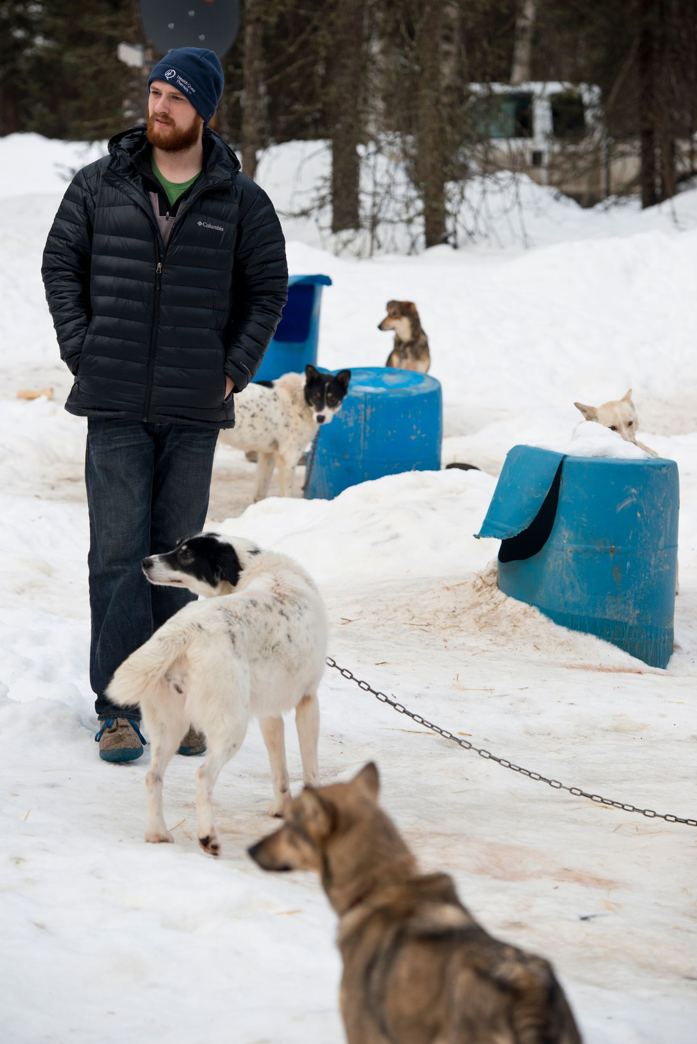 Iditarod musher Wade Marrs has improved his position substantially in  recent years. He finished in