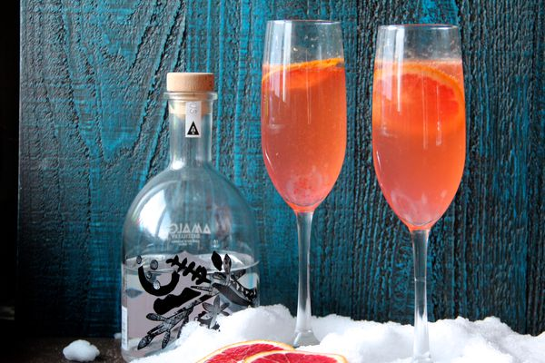 Blood orange French 75 cocktail (Maya Wilson)