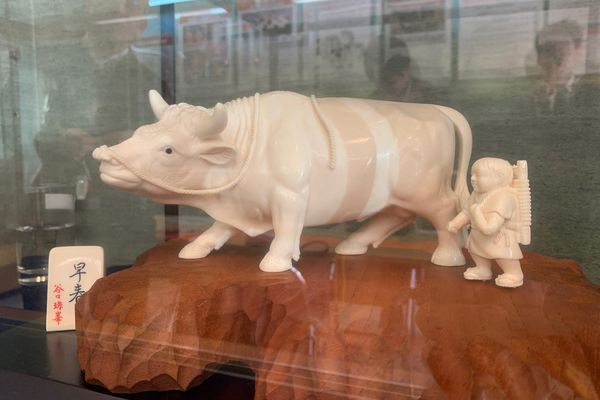 An ivory carving of a boy and a water buffalo for sale in Tokyo on April 5, 2019. (Washington Post photo by Simon Denyer)