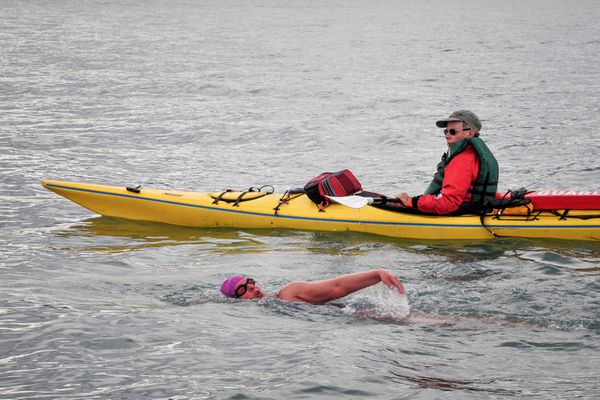 Claudia Rose swims across Kachemak Bay on Aug. 9 as Al Brenner kayaks next to her.