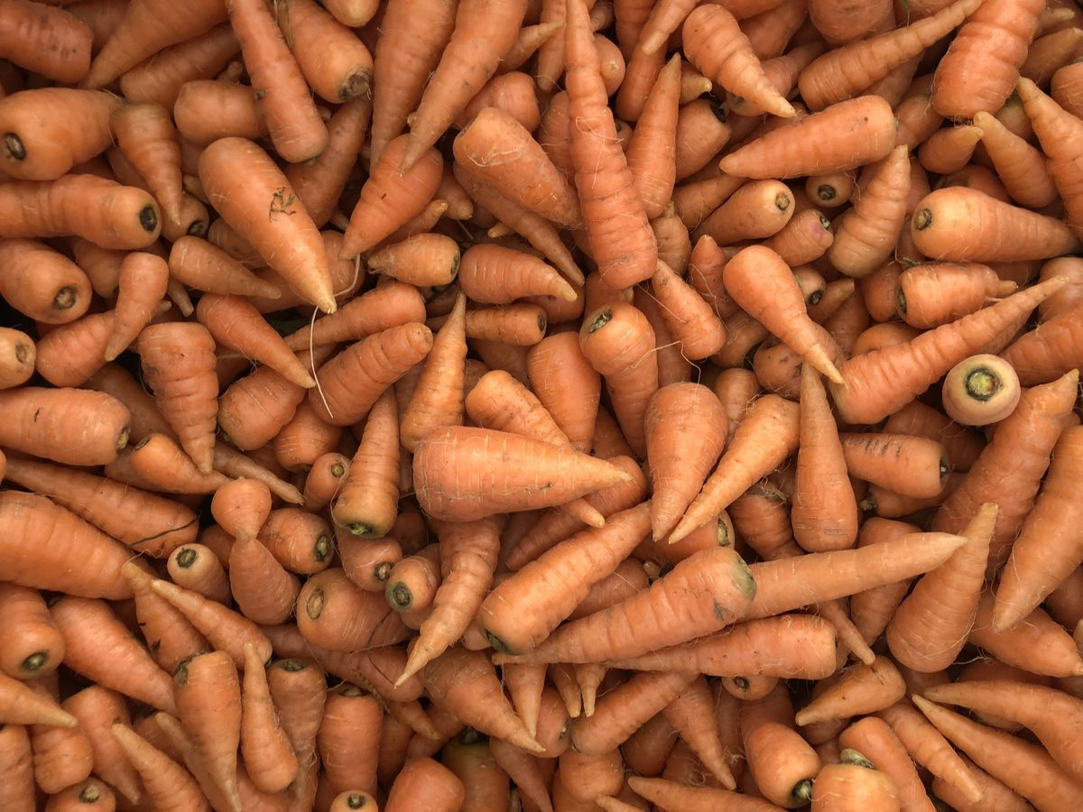 Farmers market carrots. (Julia O'Malley / ADN)