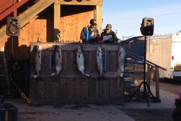 Judges read off the winners of the Homer Winter King Salmon Tournament while the winning catches hang on display.