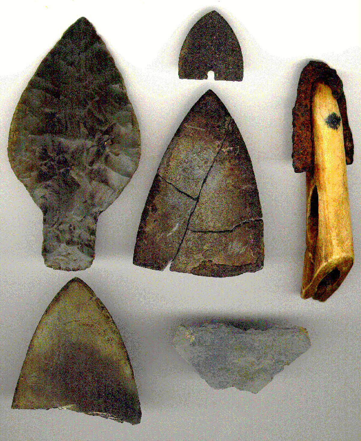 Alaska Native hunters have found six ancient harpoon points in bowhead whales since 1981, two made of slate, two of other stone, a metal blade and an ivory harpoon head tipped with metal. (Craig George / Alaska Eskimo Whaling Commission)
