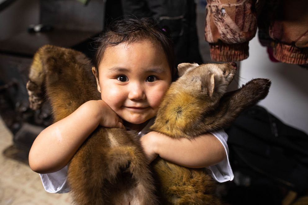 Amelia Askoak, 2, plays with marten that her father Nicephore Askoak brought home from the family trapline. (Loren Holmes / ADN)