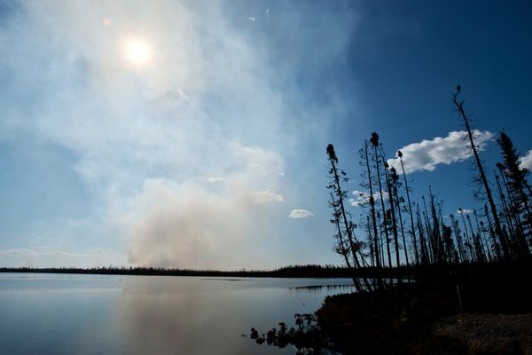 A section of the Sockeye Fire burns west of Kashwitna Lake. About 500 firefighters work to contain the Sockeye Fire in Willow Wednesday, June 17, 2015. (Marc Lester / Alaska Dispatch News)