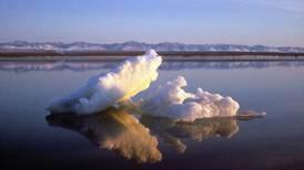 New Arctic Alaska marine atlas details ecosystem of the changing region