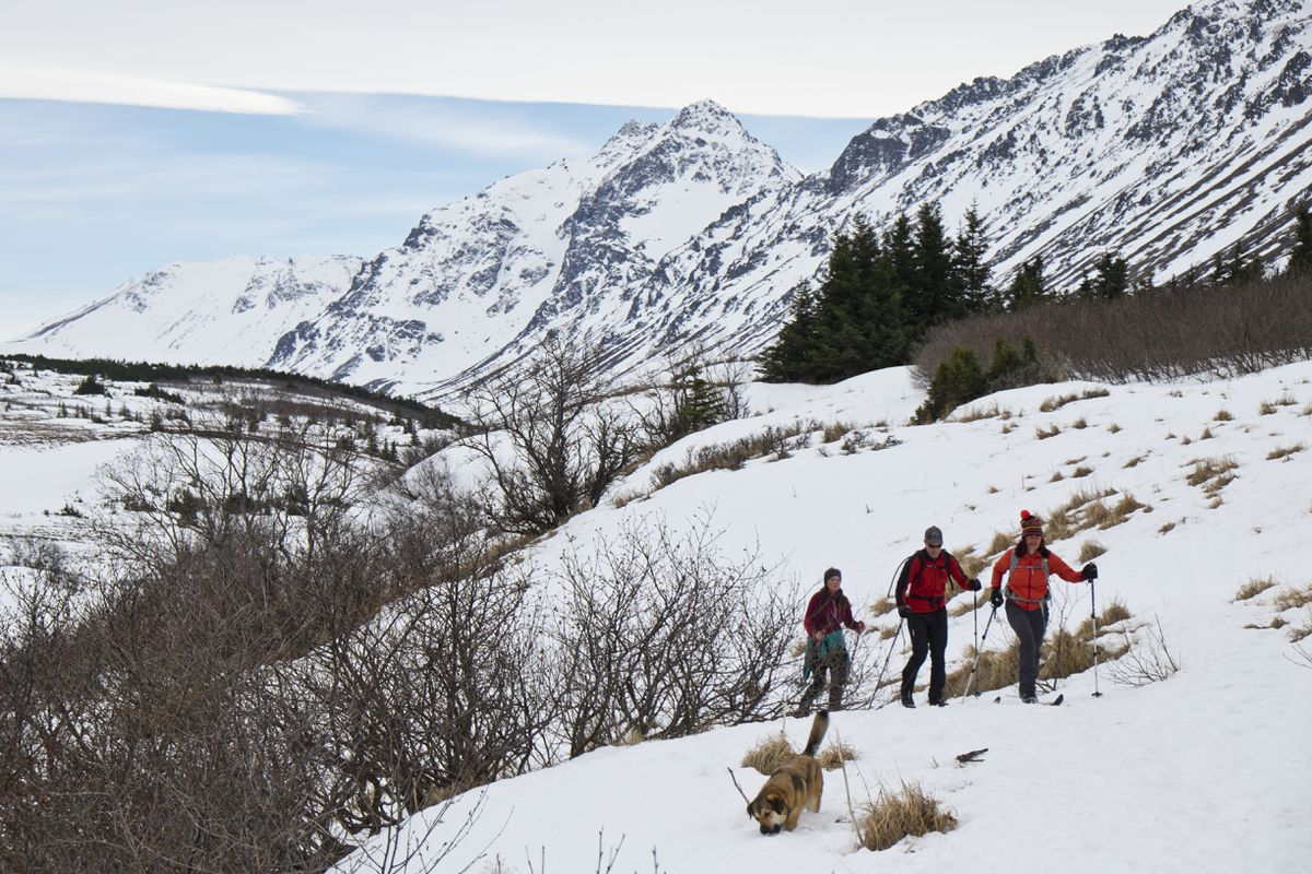 From left, Johanna Reigl, Chip Serns and Gina Wilson-Ramirez ski in Chugach State Park near the Powerline Pass Trail on March 31, 2016. (Marc Lester / ADN archive)